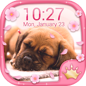 Cute Puppy Live Wallpapers 🐶