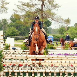 Goals by Heather Brooks - Sports & Fitness Other Sports ( equestrian, horseman, horsewoman, competition, saddles, horse, horseback, contestant, hunter, jumper, equine, hurdles, horses,  )