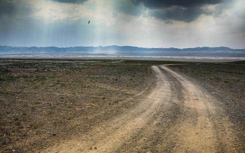 Verso Karakorum attraversando il Gobi di Alexx70
