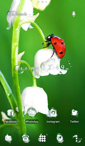 Flower Theme Ladybug Flower 1.0.0 Windows u7528 1