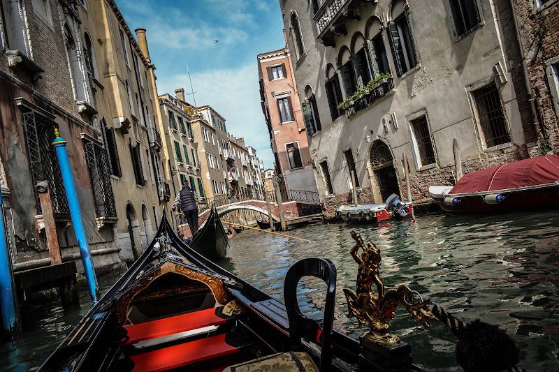 "Ordinary ""Venice"" World di Didi - Diana Gabrielli"