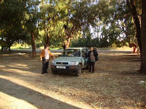 Photo: Sofia's auto