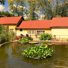 Dave's Garden 3 by Debra Summers - Buildings & Architecture Other Exteriors ( sky, water, trees )