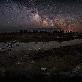 Walk this way by Jörgen Tannerstedt - Landscapes Starscapes ( sweden, stellar, night, astroscape, astronomy, milky way, galaxy, nightscape, öland )