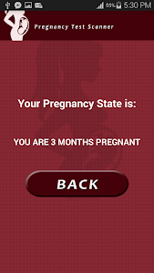 Pregnancy Test Scanner Prank screenshot 4