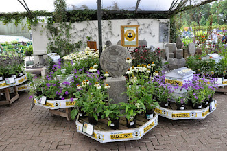 Photo: RHS label BUZZING - perfect for pollinators