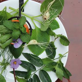 The Garden Potluck by Nishtha C - Nature Up Close Gardens & Produce ( #white, #garden, #nature, #platee, #produce )