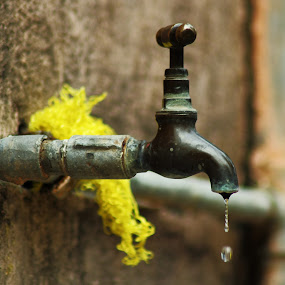 Water is Life by Sandip Ray - Artistic Objects Other Objects