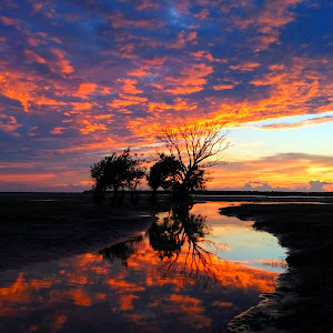 Nijhumdwip_Sea_beach.jpg
