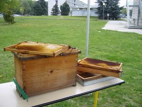 Photo: Atelier du vendredi, présentation d'une ruchette