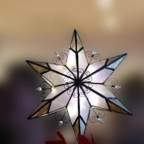 Star by Tim Davies - Public Holidays Christmas ( holiday, decoration, elegant, stars, ornament, christmas, tree topper, star, decorations, light )