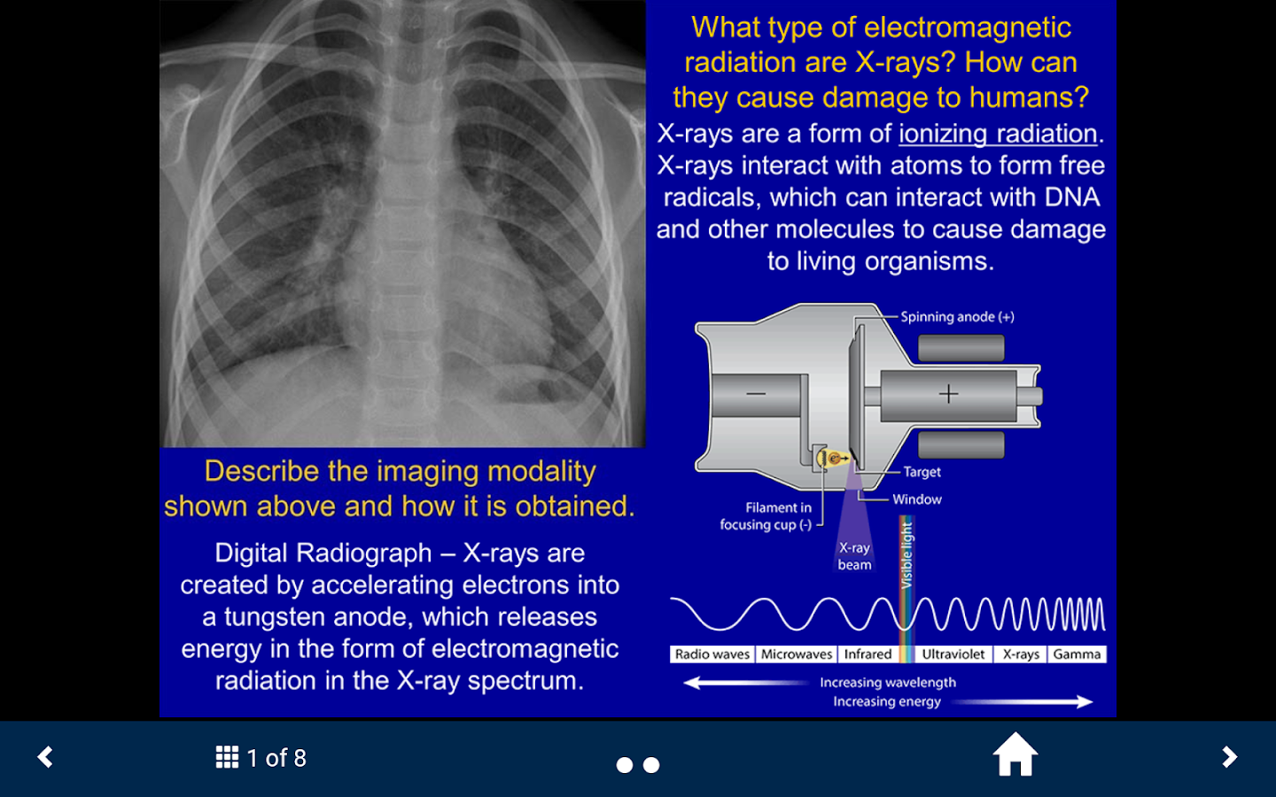 Basic RadiologyLite – SecondLook- screenshot