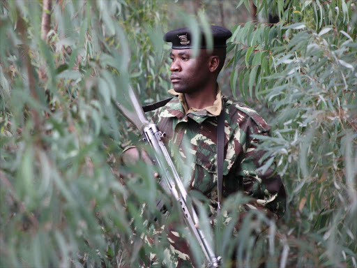 A police officer on guard in Ngong Forest. /JACK OWUOR