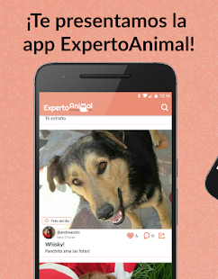 ExpertoAnimal 🐶 🐱  tu red animal: miniatura de captura de pantalla