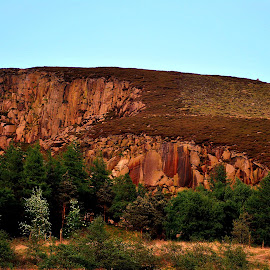 Sun  on  the  rocks by Gordon Simpson - Nature Up Close Rock & Stone