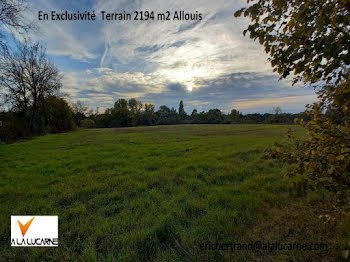 terrain à Allouis (18)