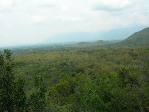 Photo: glimpses of pachamalai.