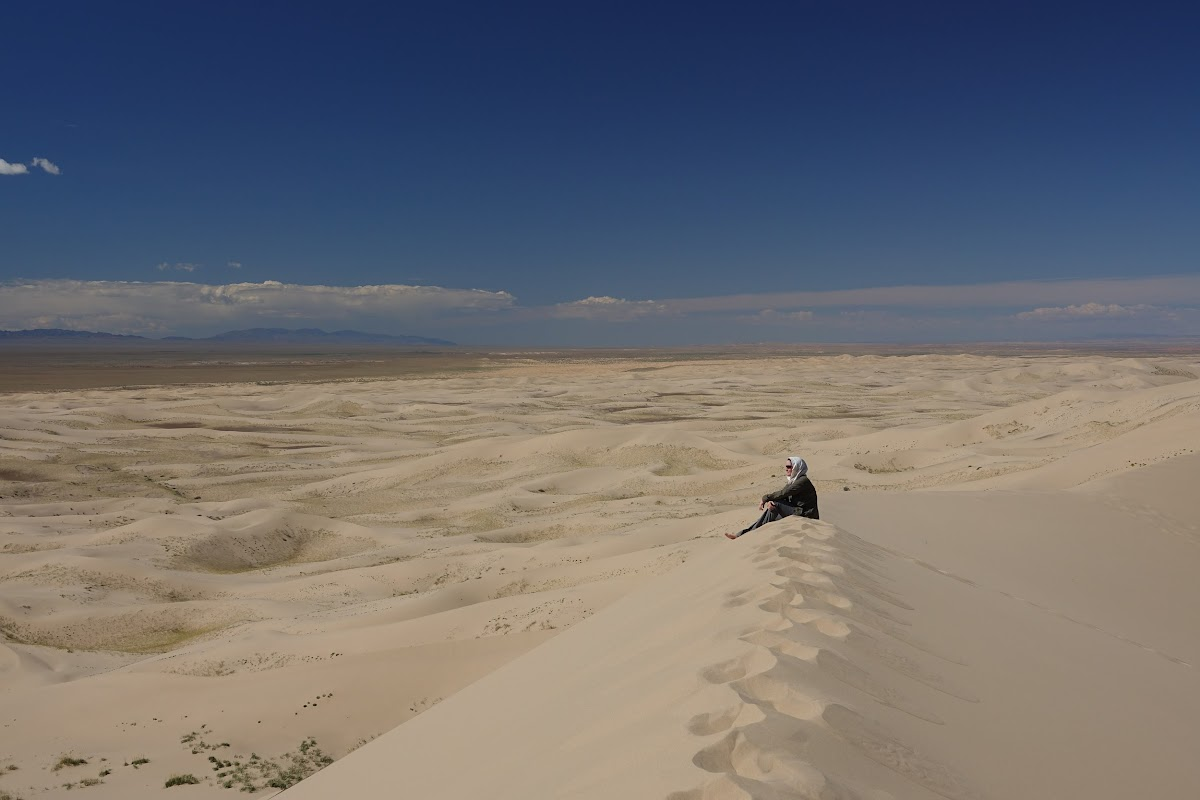 Contemplation from the Top of Dune