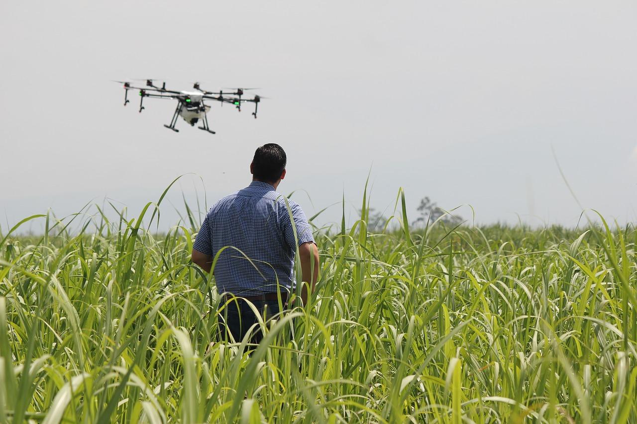 Muitos produtores rurais estão adotando a tecnologia dos VANTs ou drones