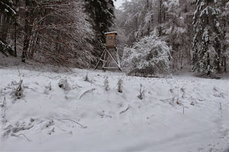 Photo: V doline je ticho, ktoré nerušia žiadni poľovníci