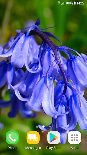 Beautiful Spring Flowers Live Wallpaper 1.0.4 screenshots 2