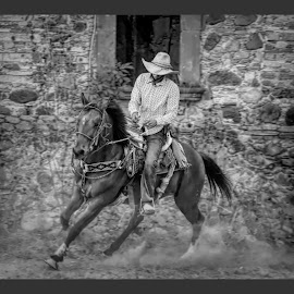 vaquero, mexico by Jim Knoch - Black & White Portraits & People
