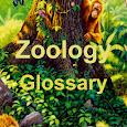 Zoology Glossary - Basic Concepts of Zoology