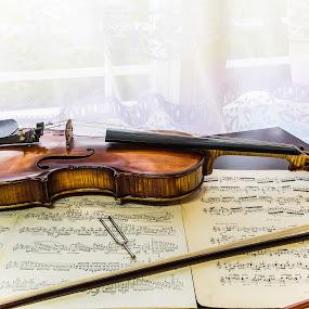 violin by Kiril Kolev - Artistic Objects Musical Instruments ( violin, instruments, clasical music )