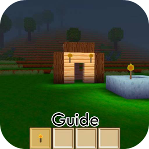 Guide for Block Craft 3d