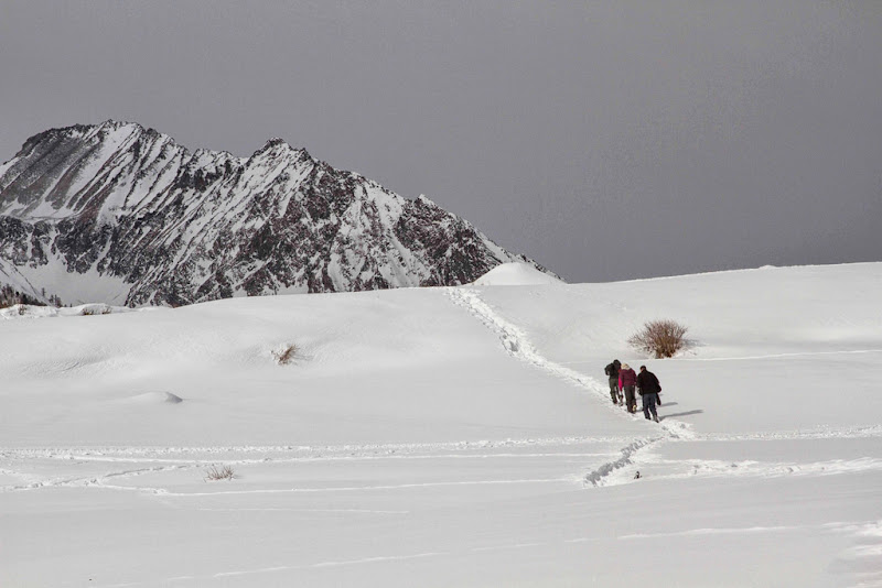sentieri di neve di antonioromei