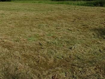 terrain à Louvencourt (80)
