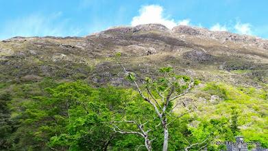 Photo: Miten pieneltä näyttääkään ihmisen tekemä maailman vapahtajan kuva Luojan luoman vuoren rinteellä! Patsas kuvan keskellä, etualalla näkyvän puunlatvan kohdalla, vähän siitä ylävasempaan.