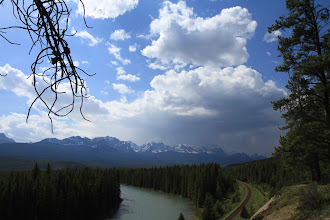 Photo: Banff NP - Bow Valley
