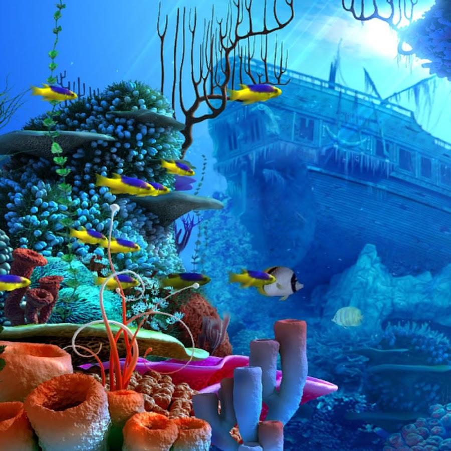 Gambar Wallpaper Pemandangan Bawah Laut Gudang Wallpaper