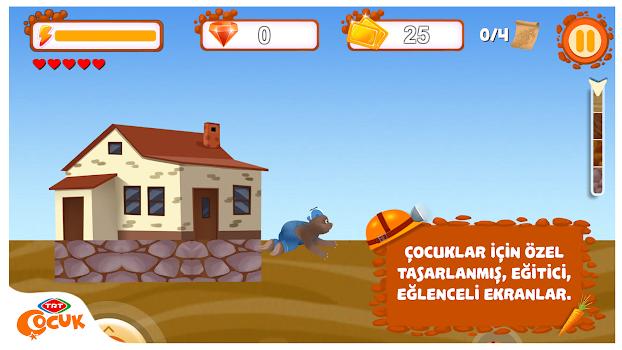 TRT Köstebekgiller