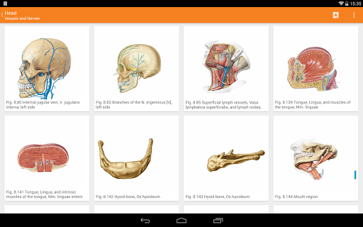Sobotta Anatomy  Screenshots 10