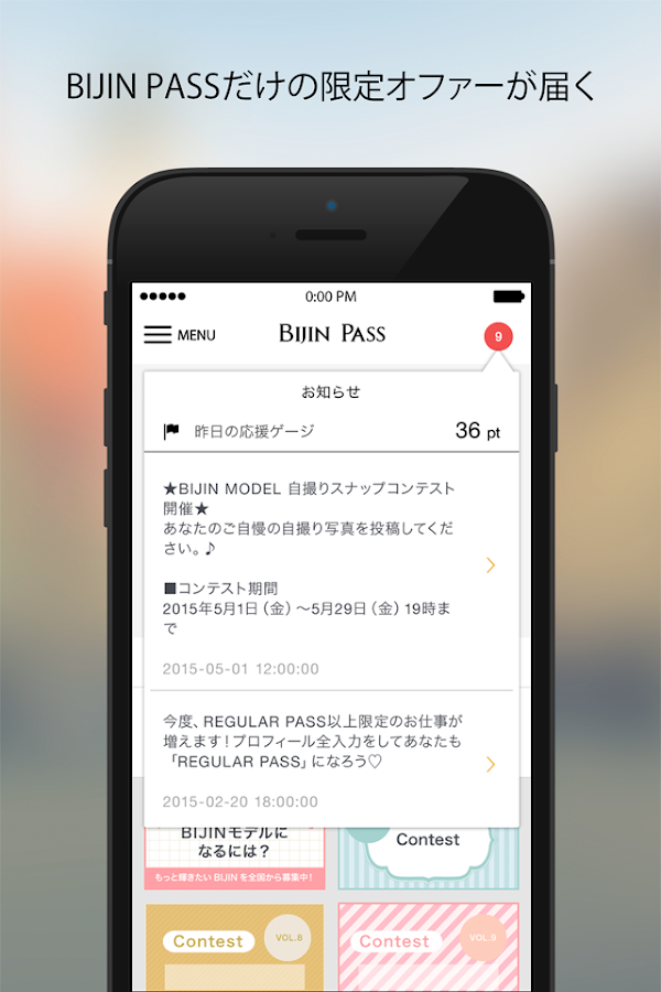 BIJIN PASS- screenshot