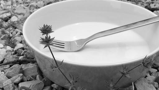 La Cuisine des Petits Cailloux  - Alimentation Sauvage - Alimentation Vivante - Anar-raw-ïde-plaisir