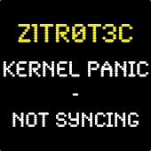 Kernel Panic-Not Syncing