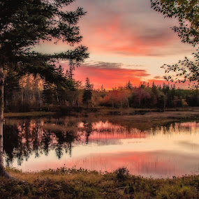Jackson Lake by Rita Taylor - Landscapes Sunsets & Sunrises ( water, sunset, trees, lake,  )