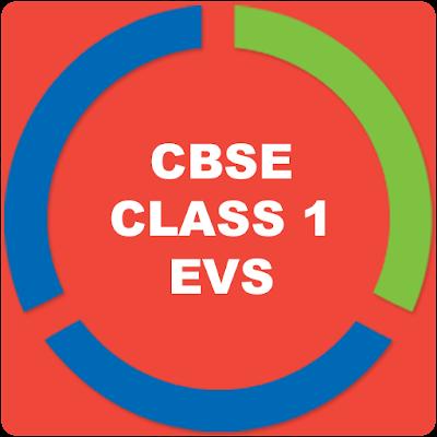 CBSE EVS FOR CLASS 1