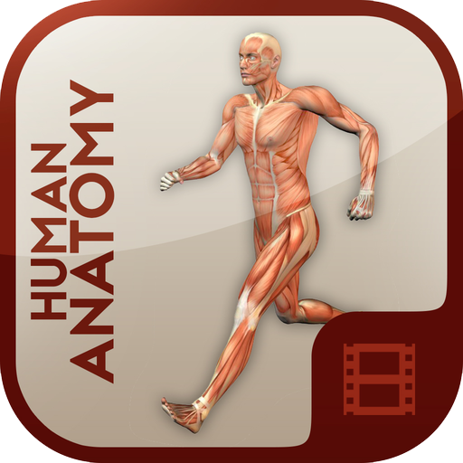 Anatomy Learning - Human Atlas 醫療 App LOGO-硬是要APP