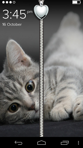Cute Kitty Zipper Lock Screen