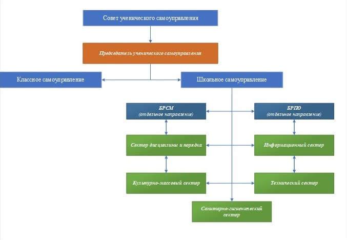 структура школьного самоуправления