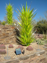 Photo: We went to AZ to visit in brother Jim in Phoenix and friends in Tucson.  This is a Chihuly cactus at Phoenix's Dessert  Museum.