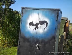 Photo: closet homen de morcego