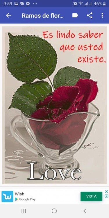 Flores Con Frases Bonitas Android Sovellukset Appagg