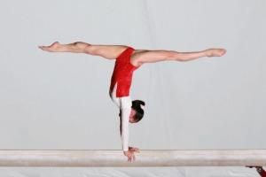 track your skills gymnastics