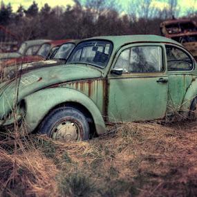 DEATH BUG by Steve Struttmann - Transportation Automobiles ( army, car, urbex, europe, kaefer, old graveyard, german spectres, luxembourg,  )