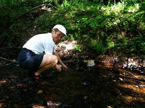 Photo: Stream Ecology